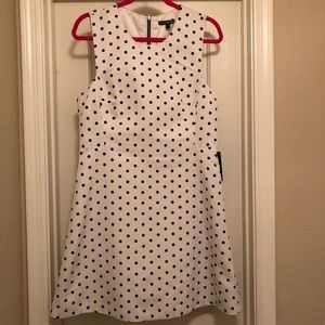 NWT Express Black and White Polka Dot Dress